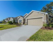 14436 Finsbury Drive, Spring Hill image