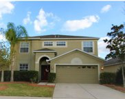 11549 Addison Chase Drive, Riverview image