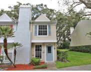 11323 Regal Square Drive Unit 11323, Tampa image