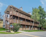3170 Columbine Drive Unit 16, Steamboat Springs image