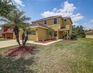 20516 Sultana Court, Tampa image