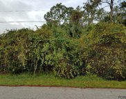 15 Pine Haven Dr, Palm Coast image