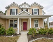 181 Sea Turtle Drive, Myrtle Beach image