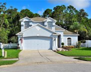 6411 Open Pasture Court, Wesley Chapel image