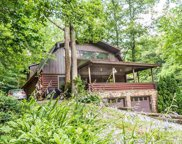 253 Tunis Rd, Sevierville image
