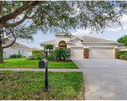3120 Red Lion Drive, Valrico image