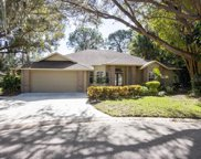 8383 Shadow Pine Way, Sarasota image