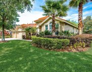 10249 Arbor Side Drive, Tampa image