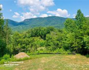 LOT 73 Chestertown  Drive, Mill Spring image