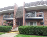 4043 Saratoga Avenue Unit 223, Downers Grove image