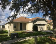 13516 Red Ear Court, Riverview image