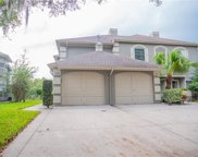 14126 Trouville Drive, Tampa image