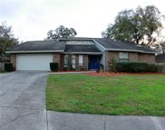 9213 Kingsridge Drive, Temple Terrace image