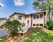8103 Leawood Lane, Woodridge image