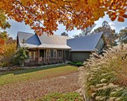 741 Quail Cove Circle, Warne image