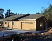 1463  American River Trail, Cool image