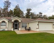 5051 Musselshell Drive, New Port Richey image