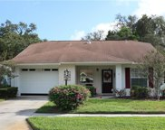 11606 Rose Tree Drive, New Port Richey image