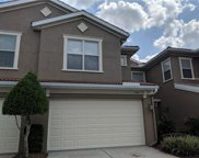 4939 Anniston Circle, Tampa image
