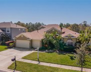12922 Castlemaine Drive, Tampa image