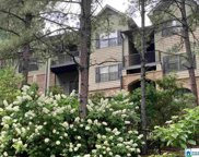 203 Sterling Oaks Dr Unit 203, Hoover image