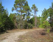 161 Woodill, Carrabelle image