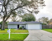 15907 Crying Wind Drive, Tampa image
