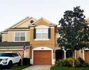 10224 Pink Palmata Court, Riverview image