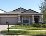19523 Whispering Brook Drive, Tampa image