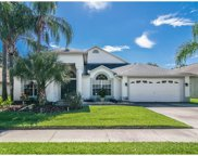 10009 Cypress Shadow Avenue, Tampa image