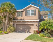 11407 Coventry Grove Circle, Lithia image
