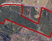 74.5 +/- Acres  Henry Knob Road, Clover image