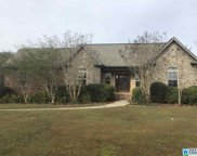 610 Ridgefield Cove, Odenville image