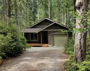 11011 Greenwood Dr, Anderson Island image