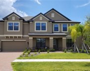 13210 Sunset Shore Circle, Riverview image