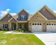 139 Legacy Trace, Huntsville image