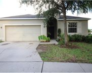 7523 Turtle View Drive, Ruskin image