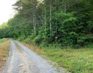 Chestnut Valley Road, Vonore image