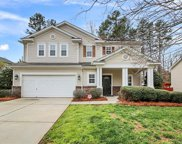 1028 Lilly Pond  Drive, Fort Mill image