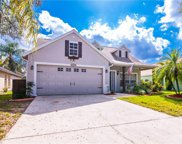 10923 Peppersong Drive, Riverview image