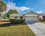 12902 Tikiwood Court, Riverview image