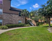 498 N Pin Oak Place Unit 210, Longwood image
