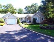 6 Elizabeth  Court, Lake Grove image