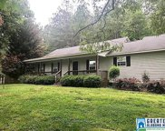 909 Sequoyah Rd, Pell City image