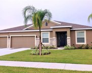 1150 Rock Creek Street, Apopka image