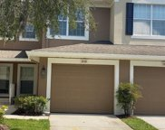 2038 Kings Palace Drive Unit 2036, Riverview image