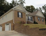 133 Weeping Willow Trail, Cleveland image
