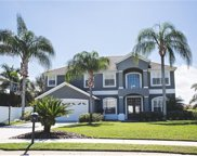 2008 Harbor Cove Way, Winter Garden image