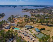 707 Cove Trail, Chapin image