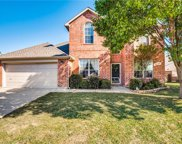5305 Selago Drive, Fort Worth image